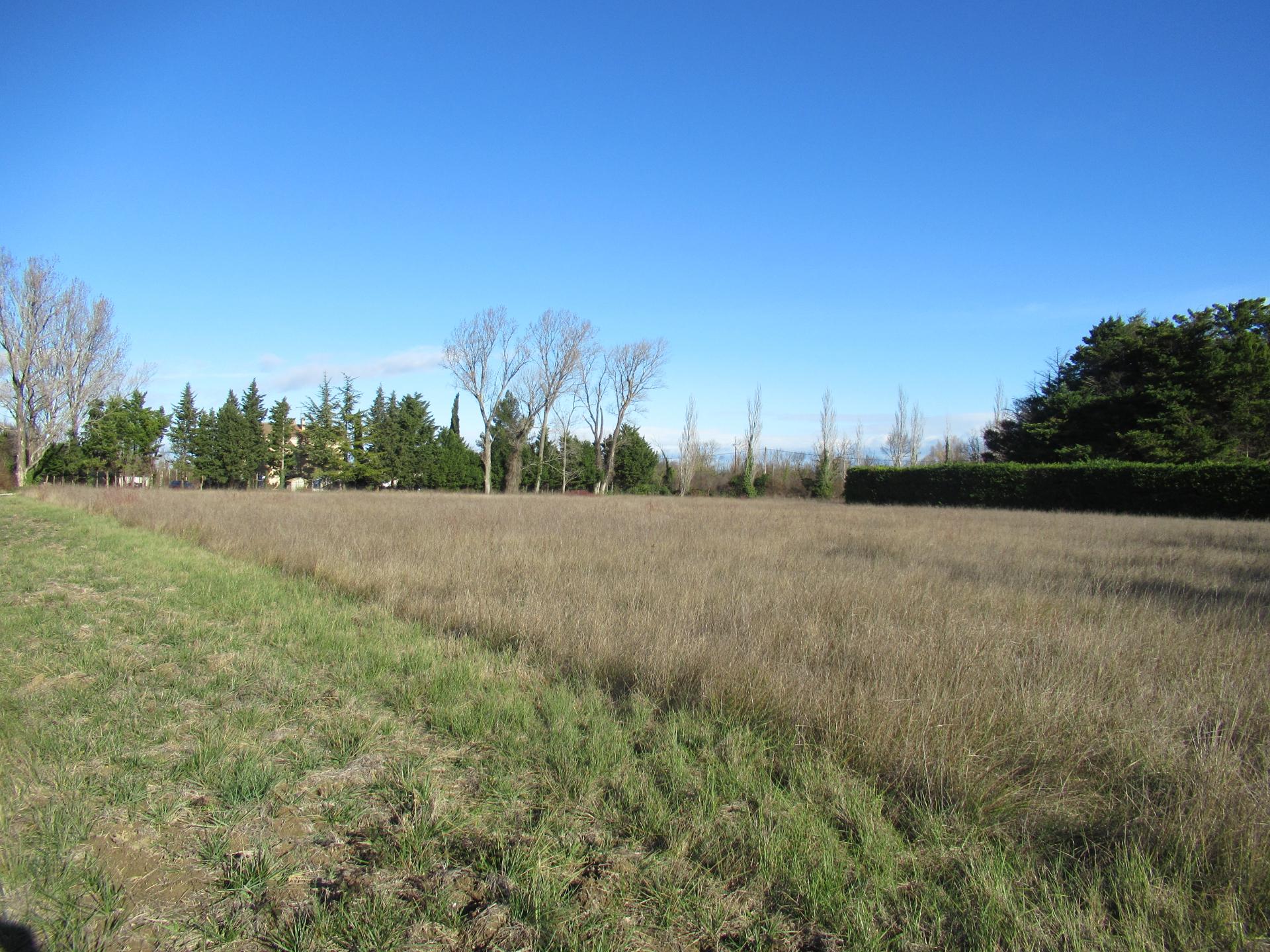 Terrain Agricole 11393 M Entraigues Sur La Sorgue
